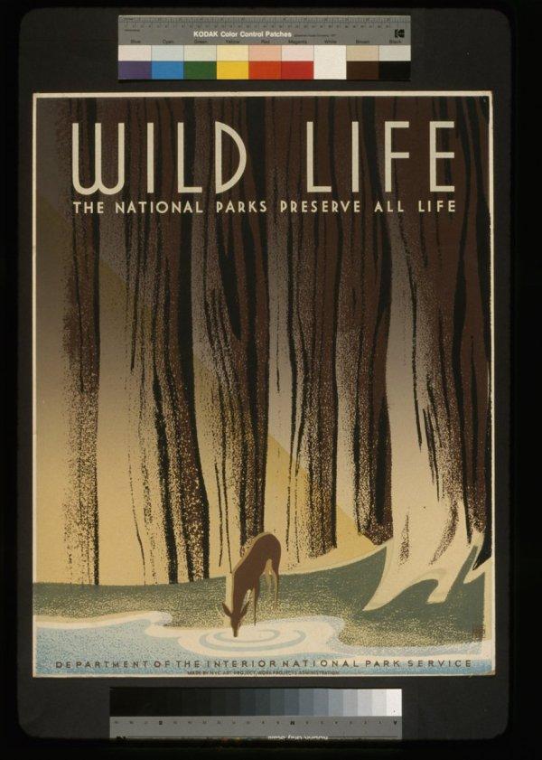 vintage-national-park-posters-11