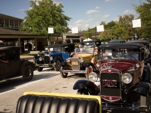 event_gallery_oldcarfestival02