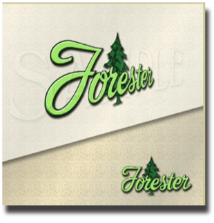 Forester Travel Trailer Decal_g15it73